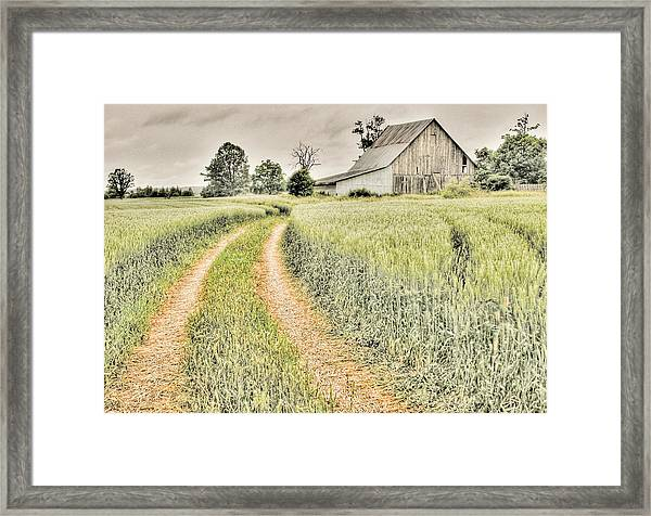 Farm On Diamondview Road Framed Print
