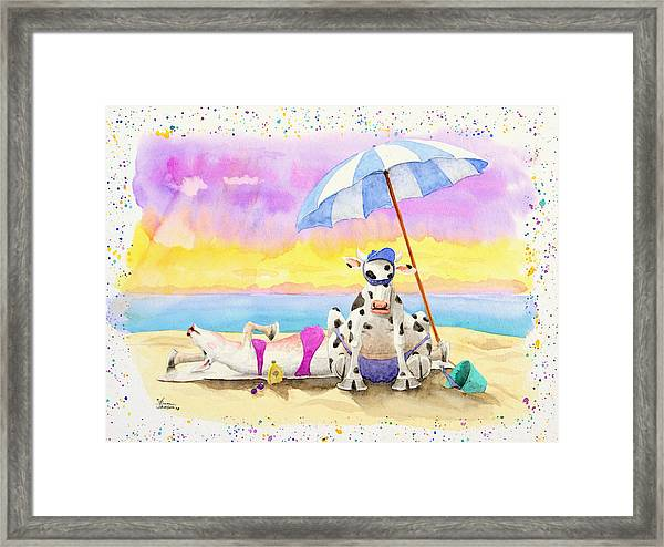 Fat Cows On A Beach 2 Framed Print