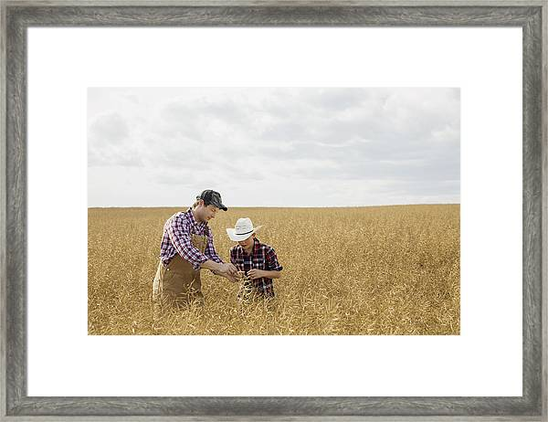 Father And Son Checking Wheat Crop Framed Print by Hero Images