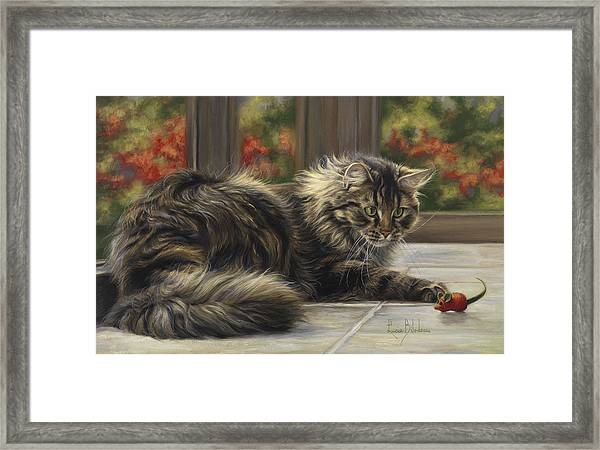 Favorite Toy Framed Print