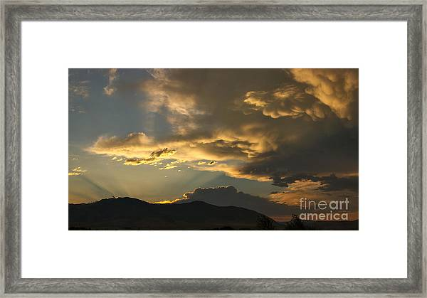 Feathers Of Sunlight Framed Print