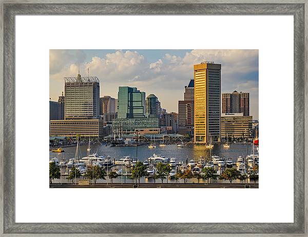 Federal Hill View To The Baltimore Skyline Framed Print