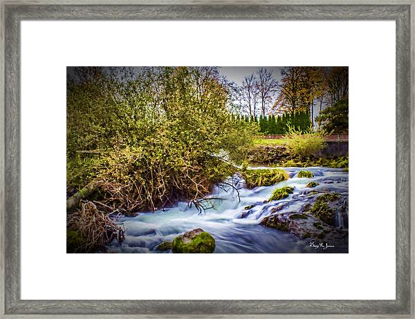 Feel The Rush Framed Print