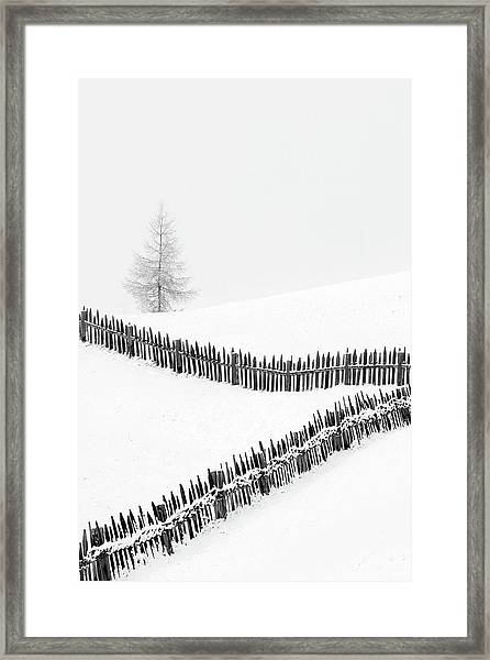 Fences: Playing With Lines Framed Print