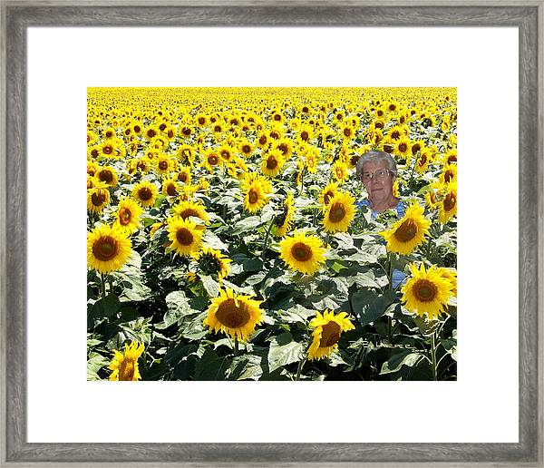 Field Of Mary Framed Print