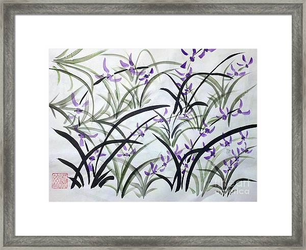 Field Of Orchids Framed Print