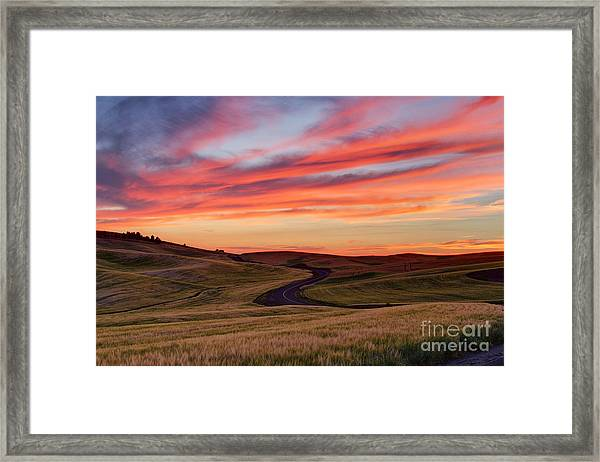 Fields And Dreams Framed Print