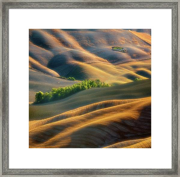 Fields Framed Print