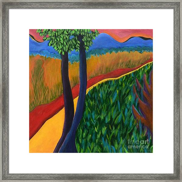 Fields Of Agave Framed Print by Elizabeth Fontaine-Barr