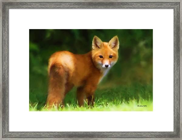 Fiery Fox Framed Print