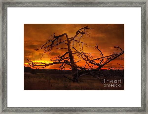 Fiery Sunrise Framed Print