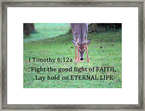 Fight Of Faith Framed Print