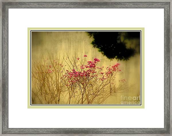 Filigree 3 In A Frame Framed Print