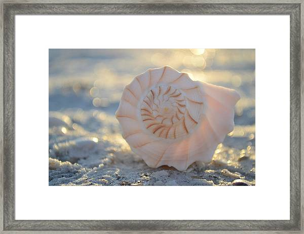 Fill Your Soul Framed Print