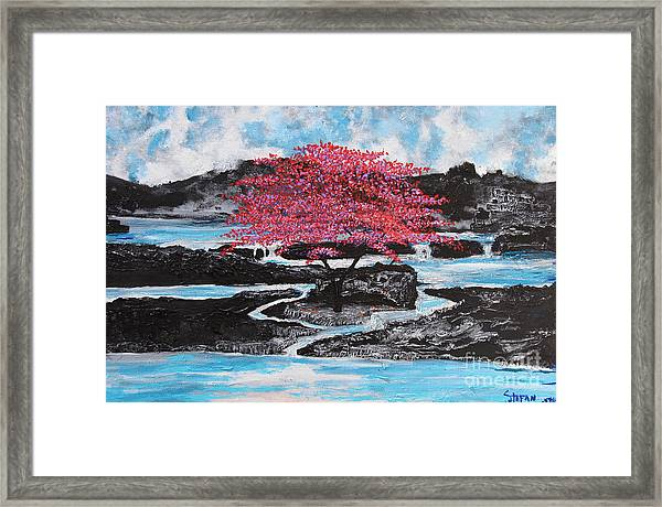 Finding Beauty In Solitude Framed Print
