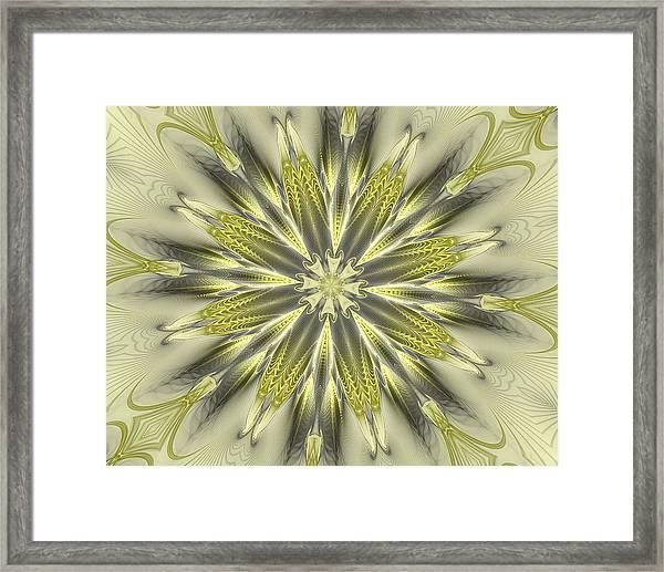 Finer Life Kaleidoscope Framed Print