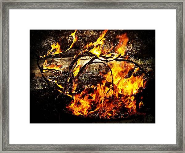 Fire Fairies Framed Print