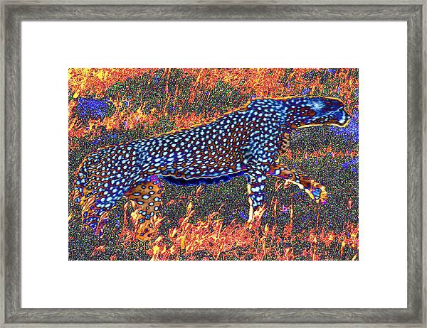 Fire Spirit Framed Print