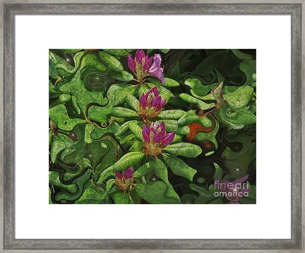Fireflies And Flowers Framed Print