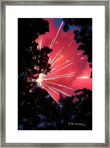 Fireworks Forest Framed Print