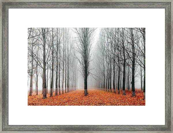 First In The Line Framed Print