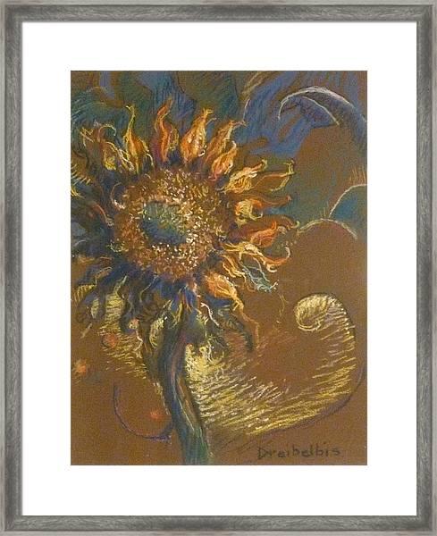 First Sunflower Framed Print