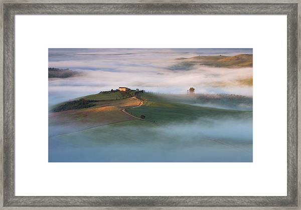 First Touch Framed Print by