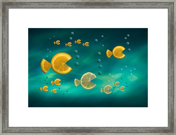 Fish In The Sea Framed Print
