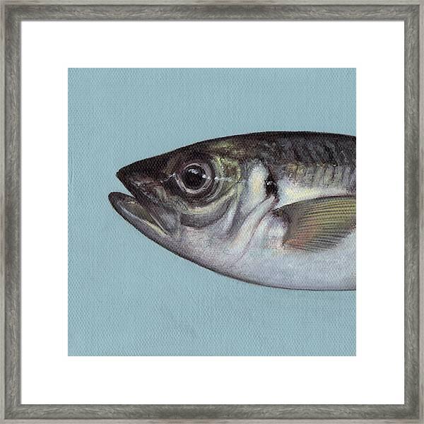 Fish No.3 Framed Print