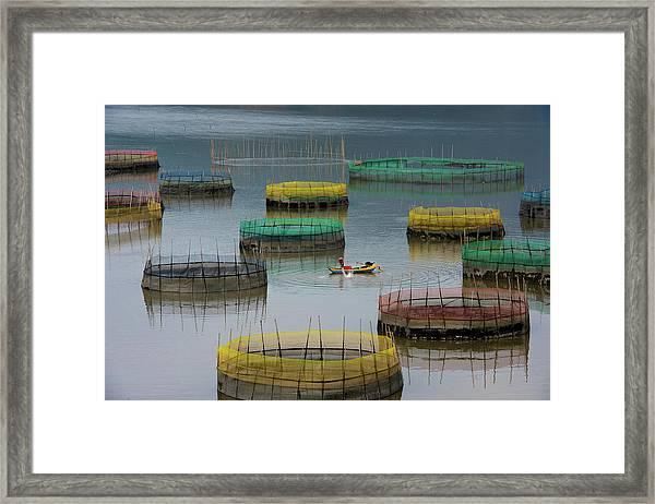 Fishing Life Framed Print by Bongok Namkoong