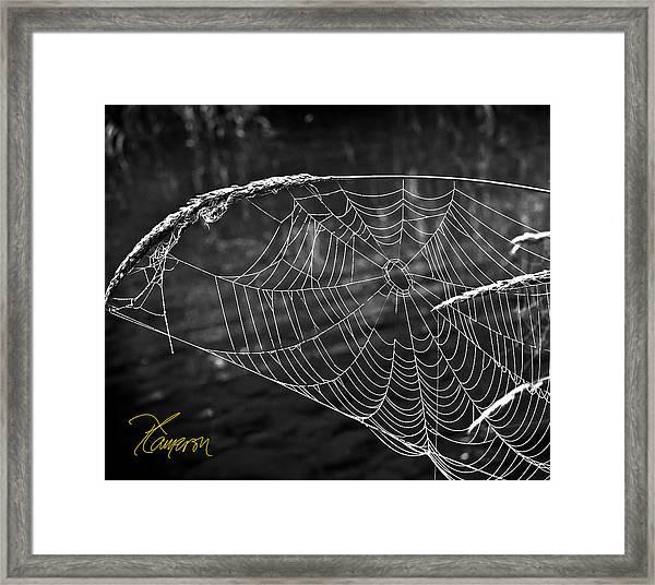 Fishing The Breeze Framed Print