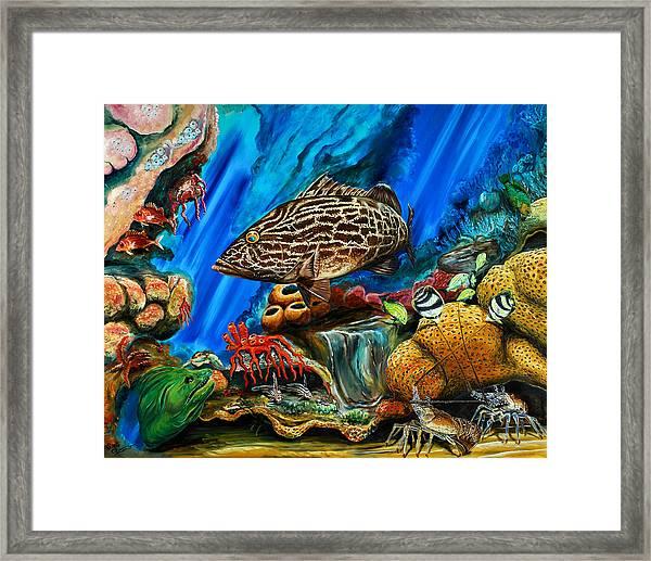 Fishtank Framed Print