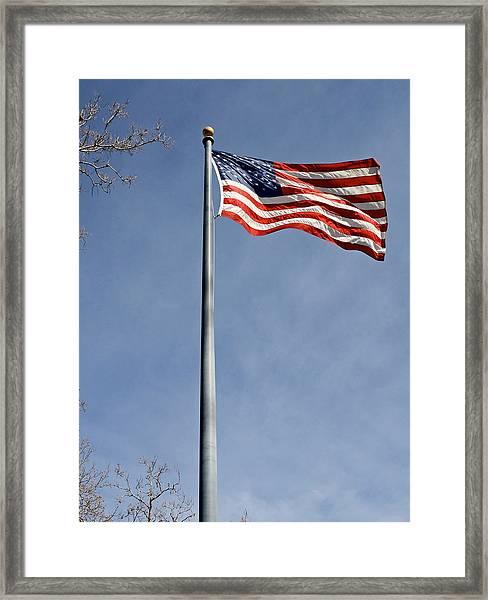 Flag On Duty 2013  Framed Print