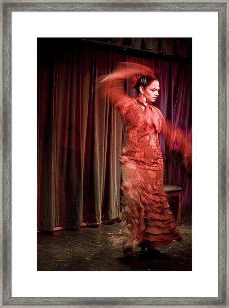 Flamenco Series 13 Framed Print