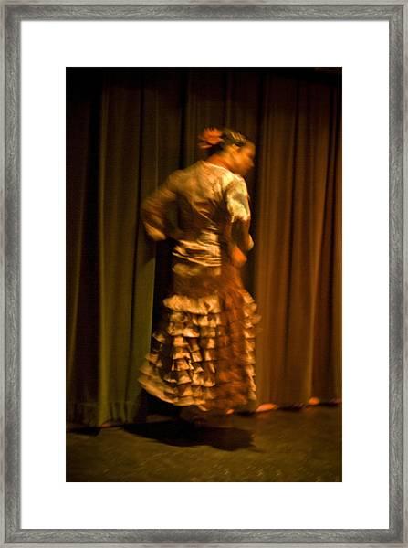 Flamenco Series 14 Framed Print