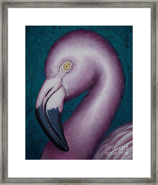 Flamingo Portrait Framed Print