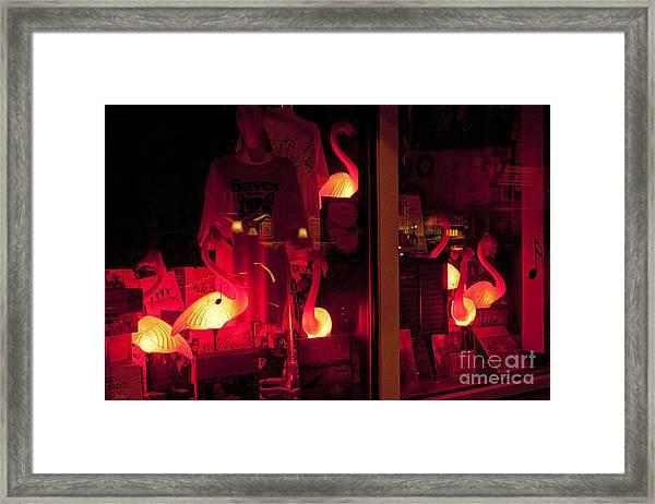 Flamingos On Market Street Framed Print