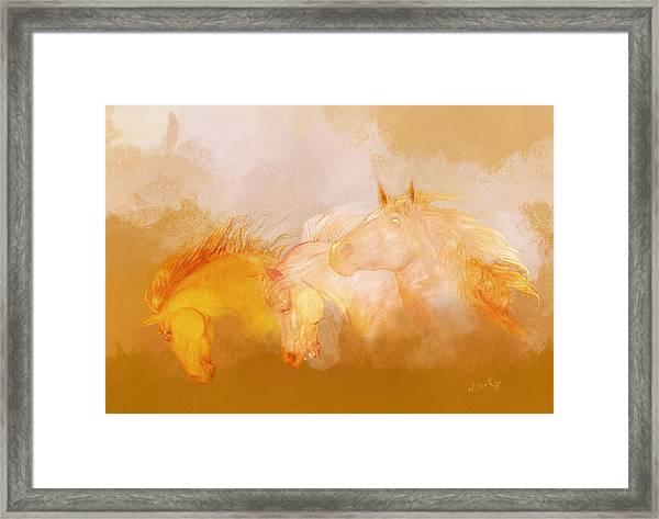 Flaxen Manes Framed Print