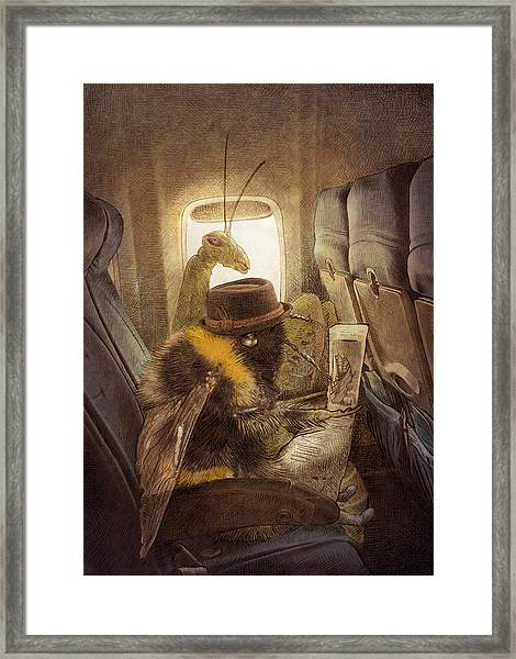 Flight Of The Bumblebee Framed Print