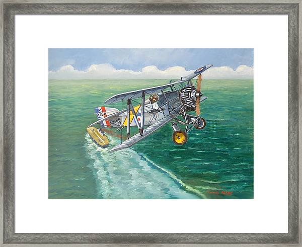 Flight Of The Flycatcher 2 Framed Print