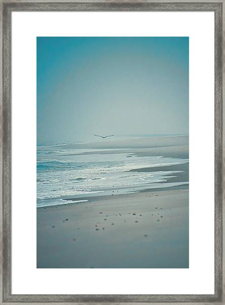 Framed Print featuring the photograph Flight Of Tranquility And Peace by Beth Sawickie