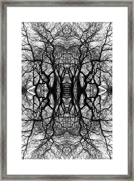 Tree No. 11 Framed Print