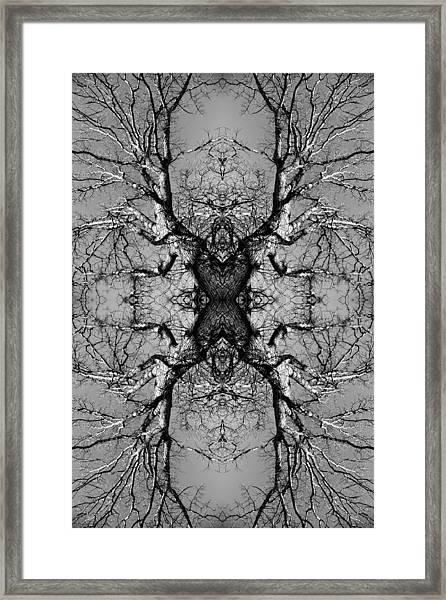 Tree No. 3 Framed Print