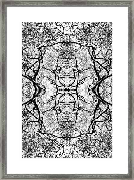 Tree No. 5 Framed Print