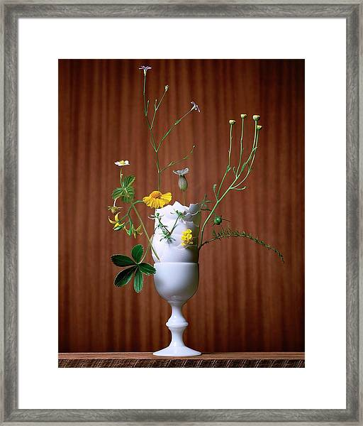 Floral Arrangement By Eve Suter Framed Print