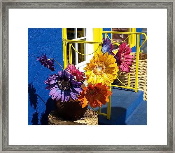 Flores Colores Framed Print