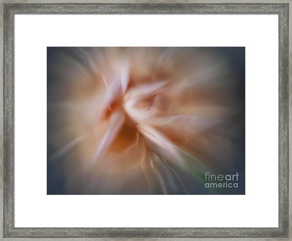 Flower #050 Framed Print
