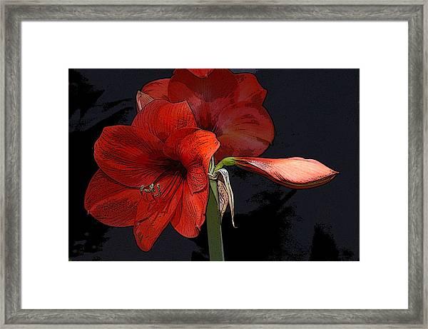 Flower Art02 Framed Print