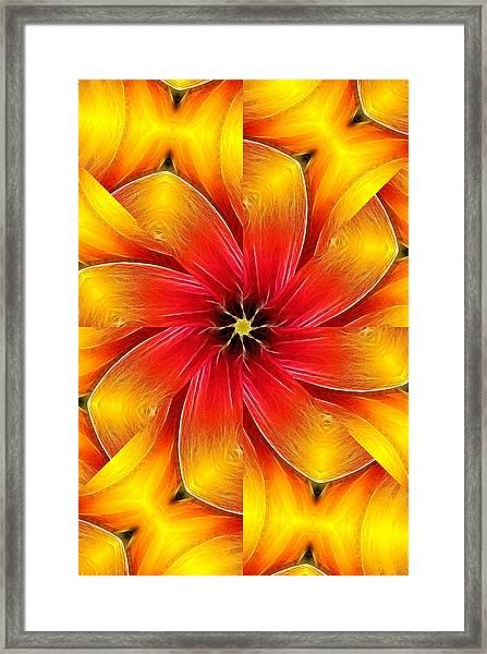 Flower Close-up--fractalius Kaleidoscope Framed Print
