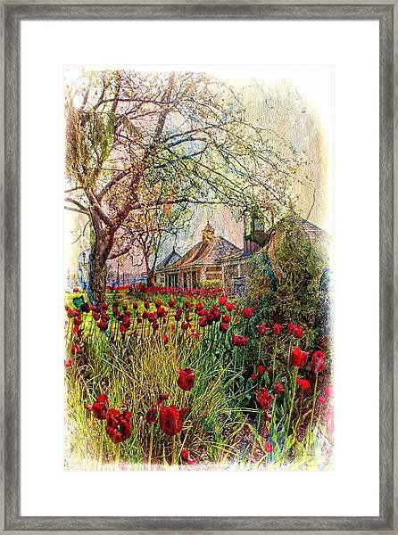 Flower Garden Series 02 Framed Print
